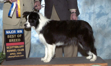 A Best of Breed photo of young Tegan